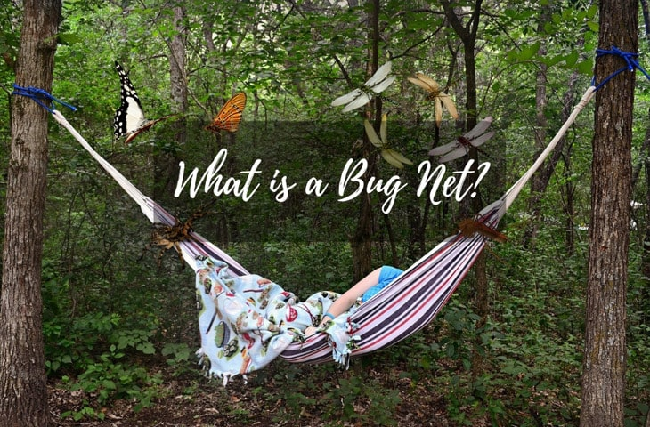 What is a Bug Net