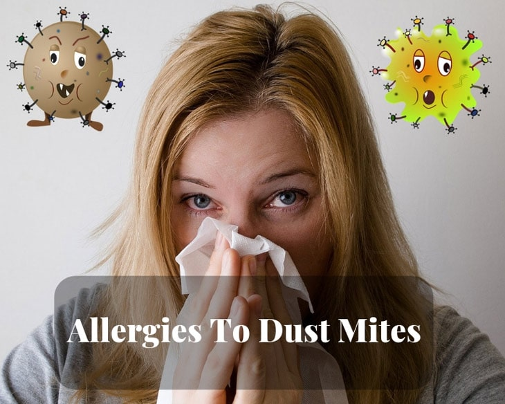 Allergies To Dust Mites